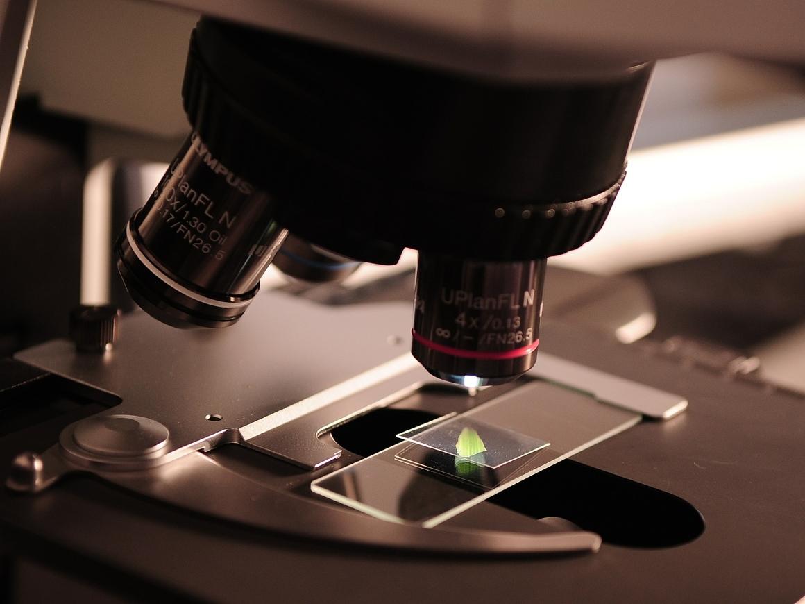 7000 лет: учёные нашли самый старый вирус гепатита B