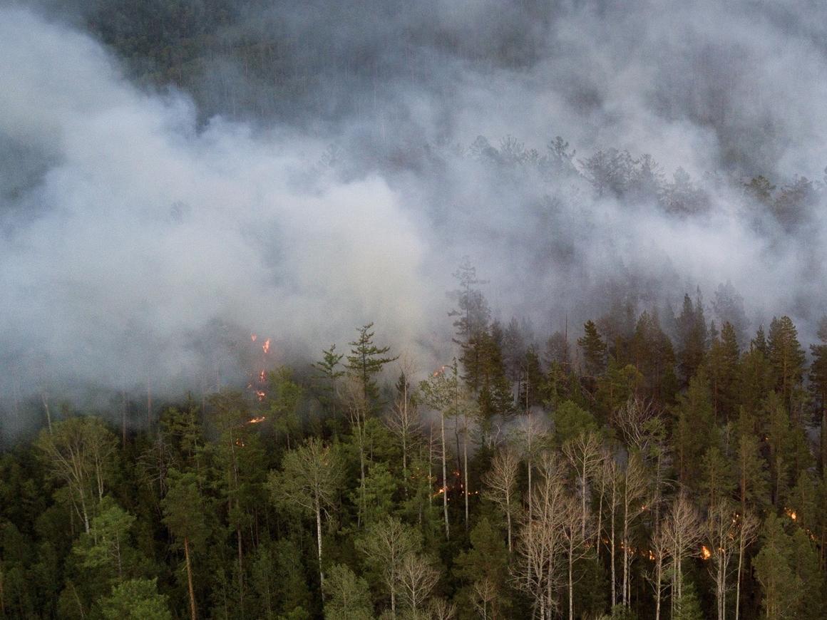 Безумный Макс: В Хабаровске поезд проехал через горящий лес (видео)