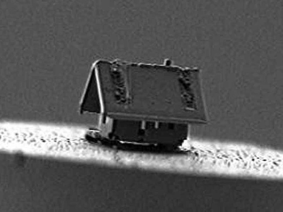 Это самый маленький дом в мире: в нём поместится разве что амёба