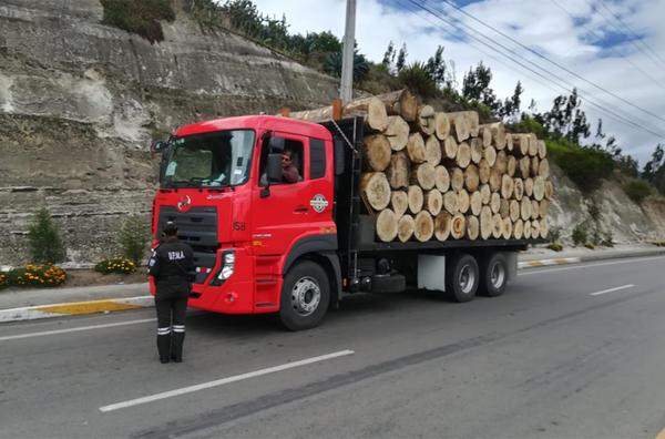 Грузовик с редкой древесиной остановлен в Эквадоре