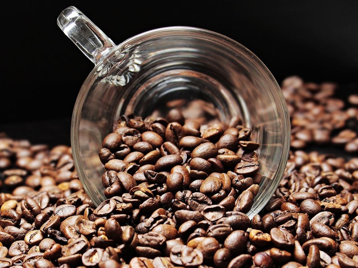 Утренний ритуал под угрозой! Глава Starbucks рассказал о страшном будущем кофе