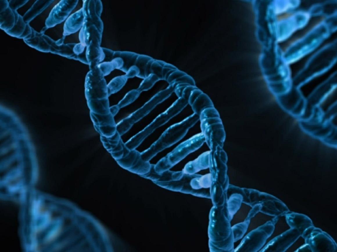 Люди сначала делают ДНК-тесты, а потом игнорируют результаты