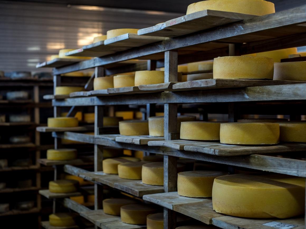 Французы едят русский сыр в огромном количестве и забивают голы