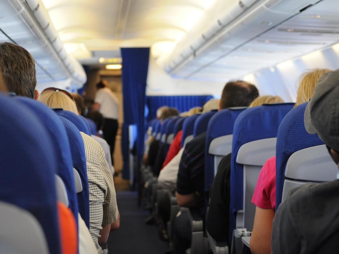 Студентка устроила переполох в самолёте и спасла беженца от депортации (видео)