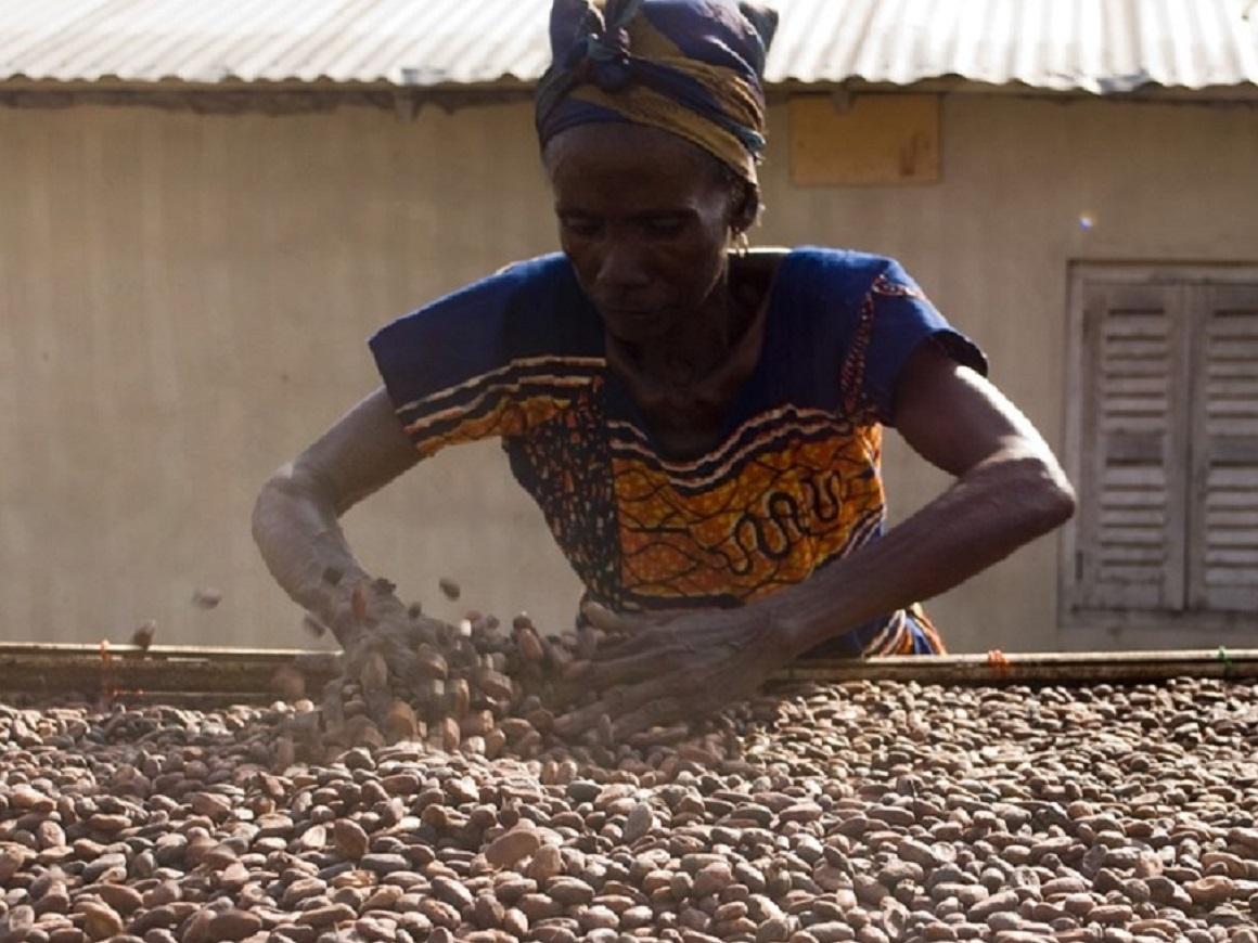 Шоколадные проблемы: производство сладкого обходится слишком дорого