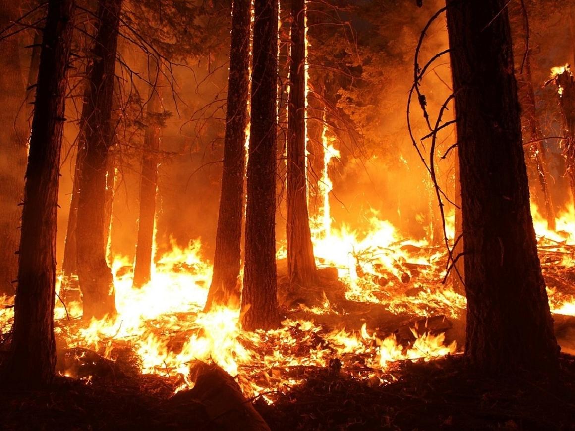Помнишь лето 2010? Будь осторожен - пожарная опасность выросла в 70 регионах РФ