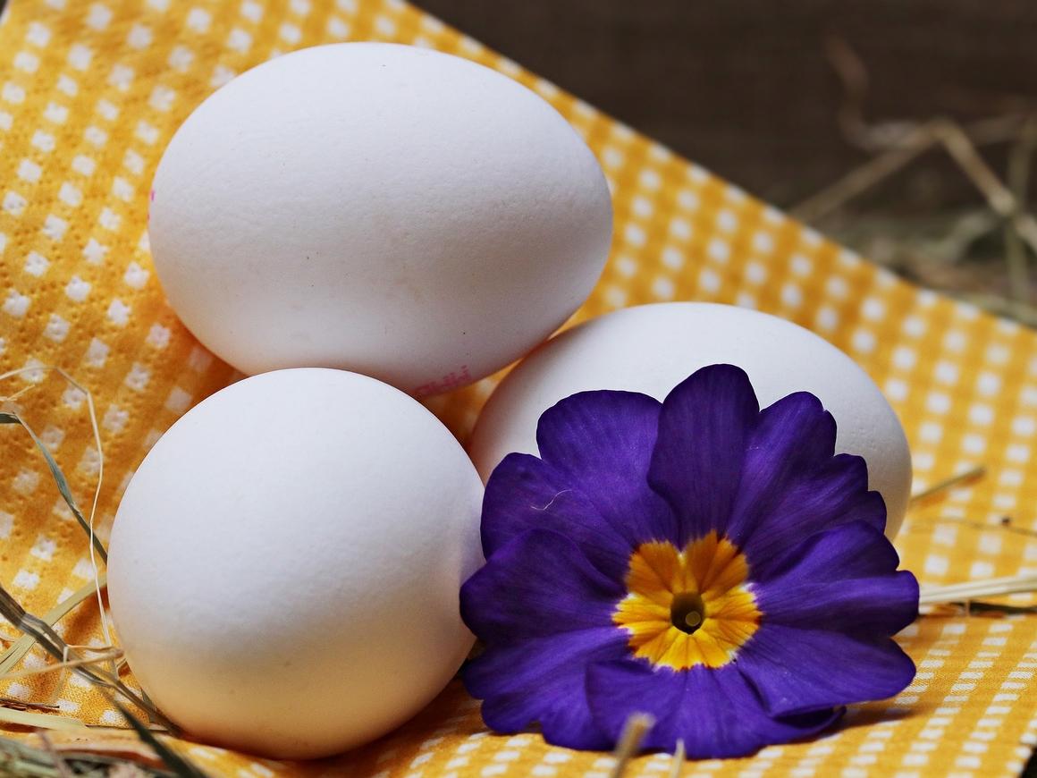 Во всём мире только американцы моют яйца – но зачем?