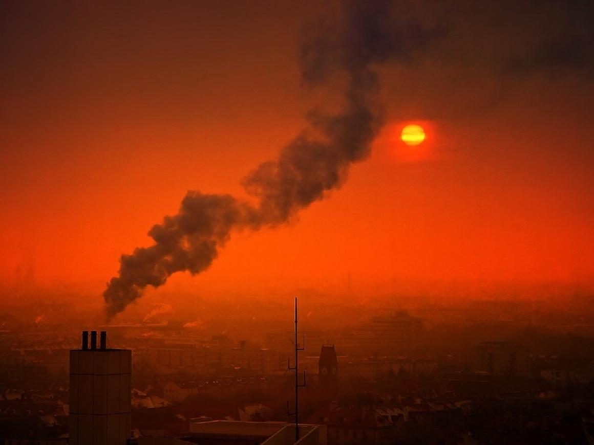 Дышишь и тупеешь: из-за загрязнения воздуха так и происходит
