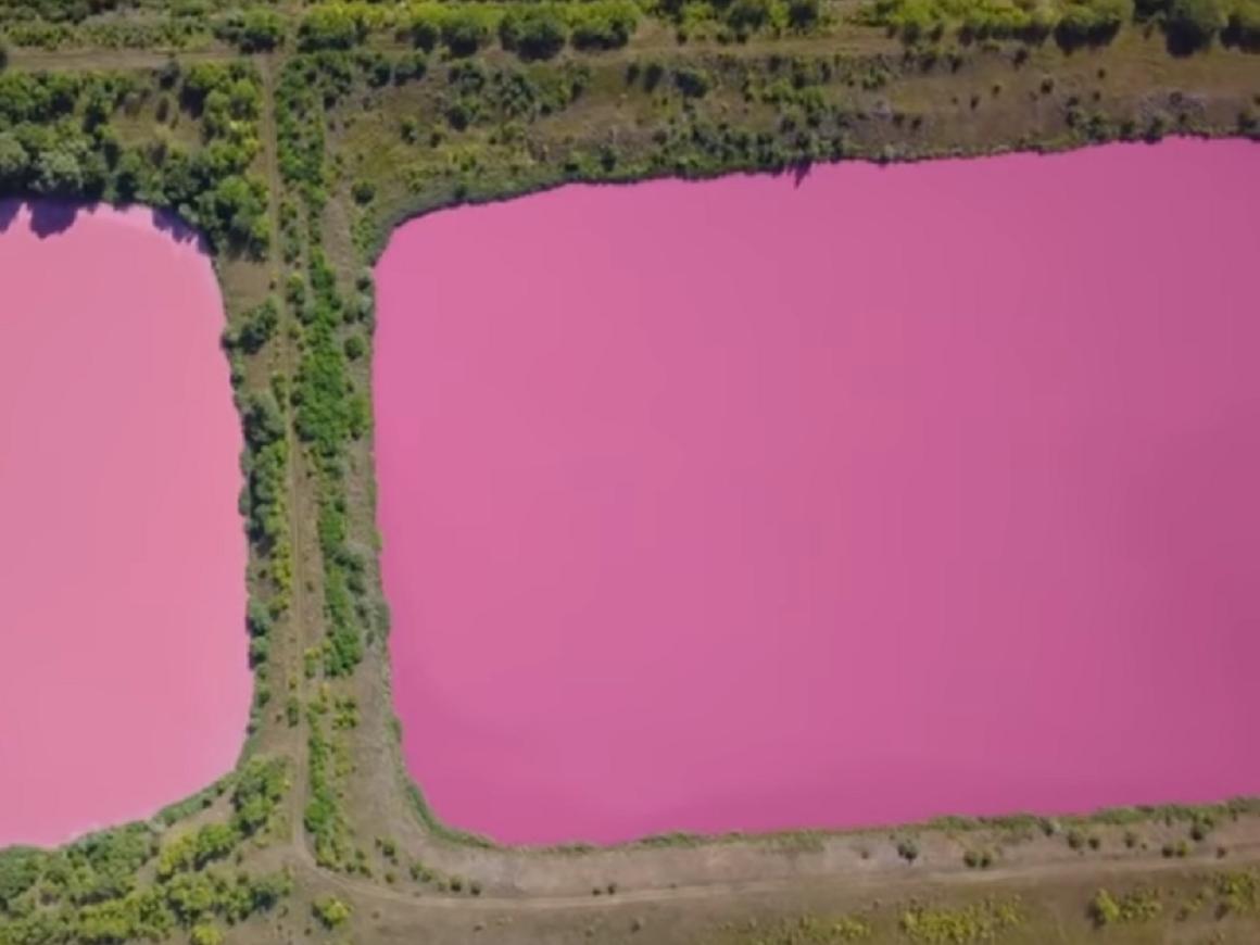 В Самарской области озера окрасились в розовый. Красиво и непонятно (видео)