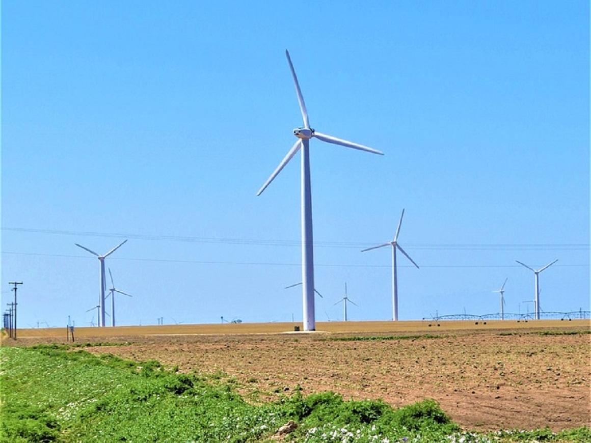 Сахара позеленеет и перестанет быть пустыней - реально ли это?