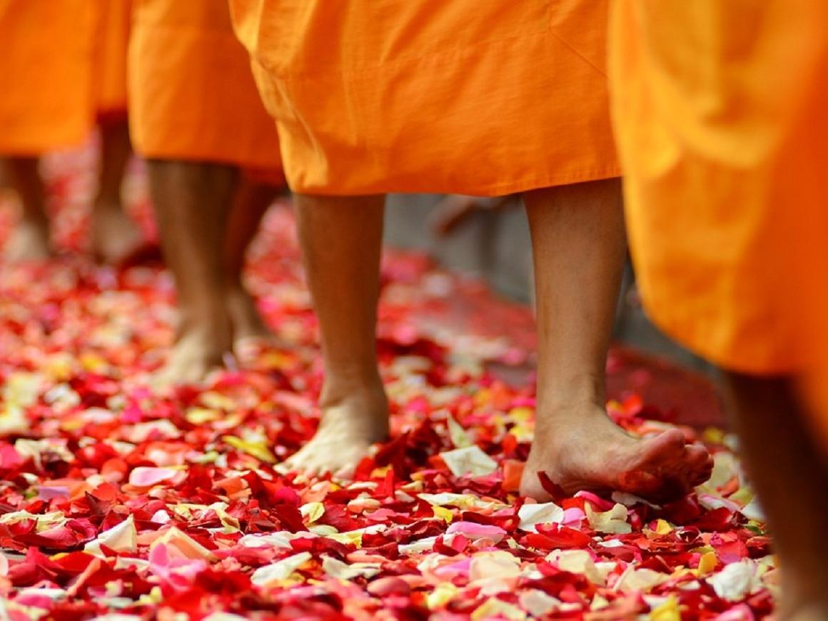 Тайские монахи разжирели: правительство королевства встревожено