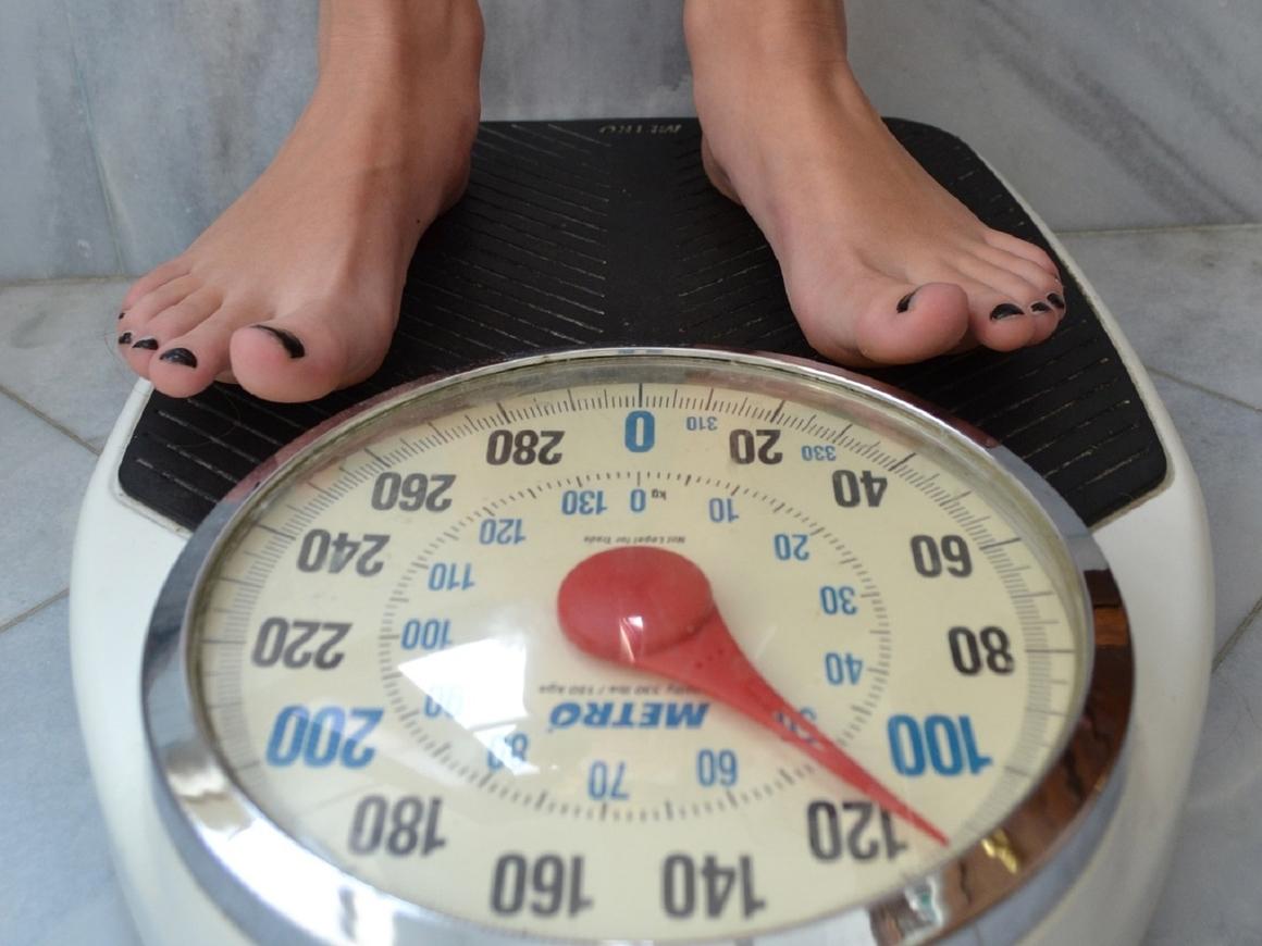 Проверено на мышах: лишний вес ухудшает работу мозга