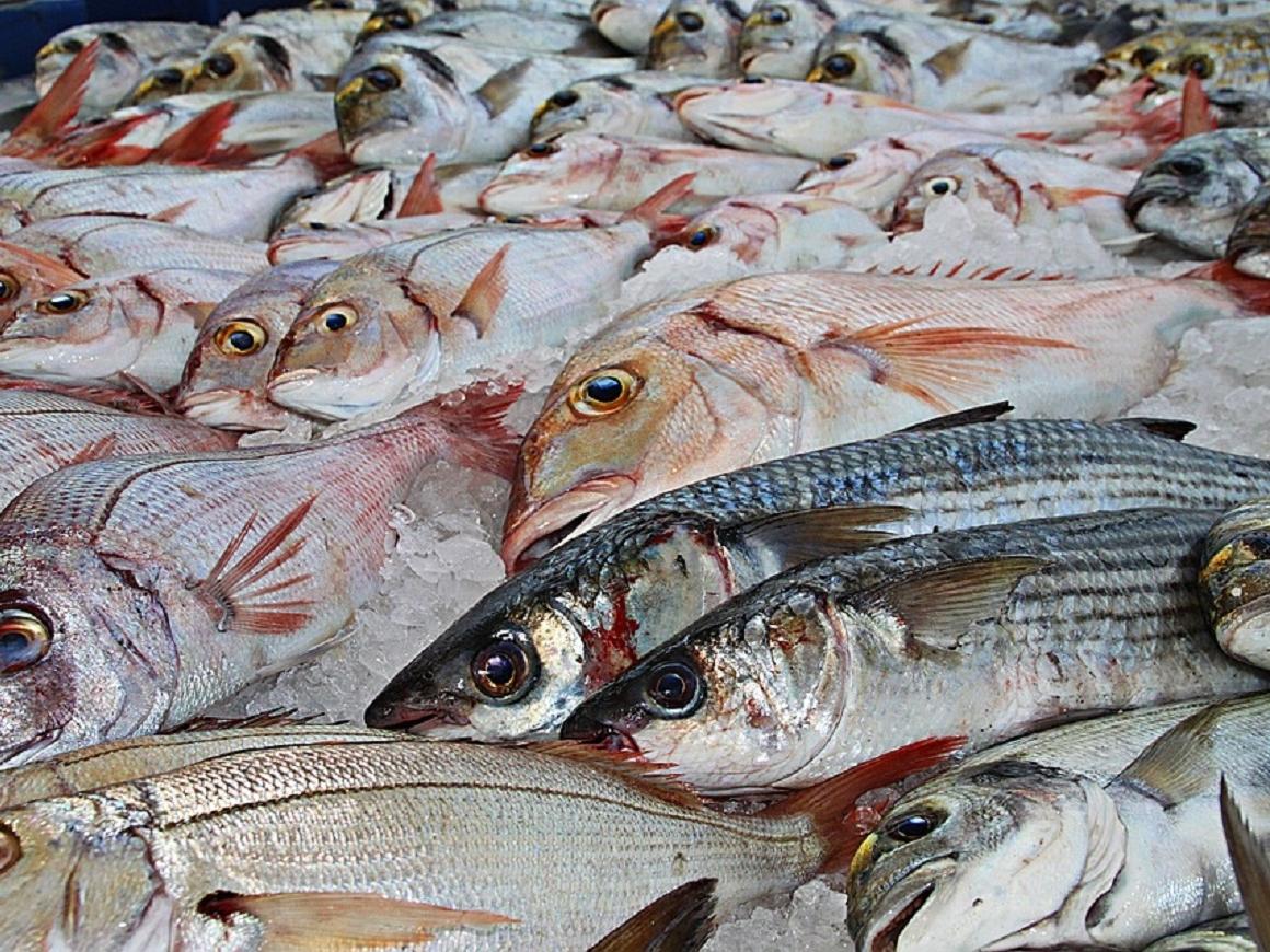 В Японии закроют самый известный рынок Цукидзи. И откроют в другом месте