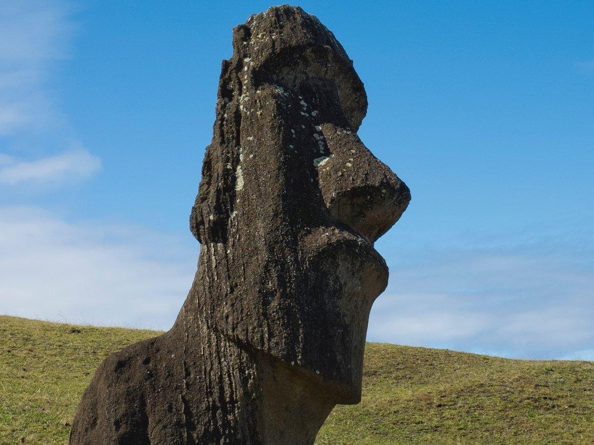 Жители острова Пасхи поехали на поклон в Лондон. Хотят свою статую назад