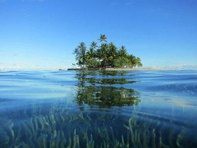 На индийском острове аборигены застрелили туриста из лука