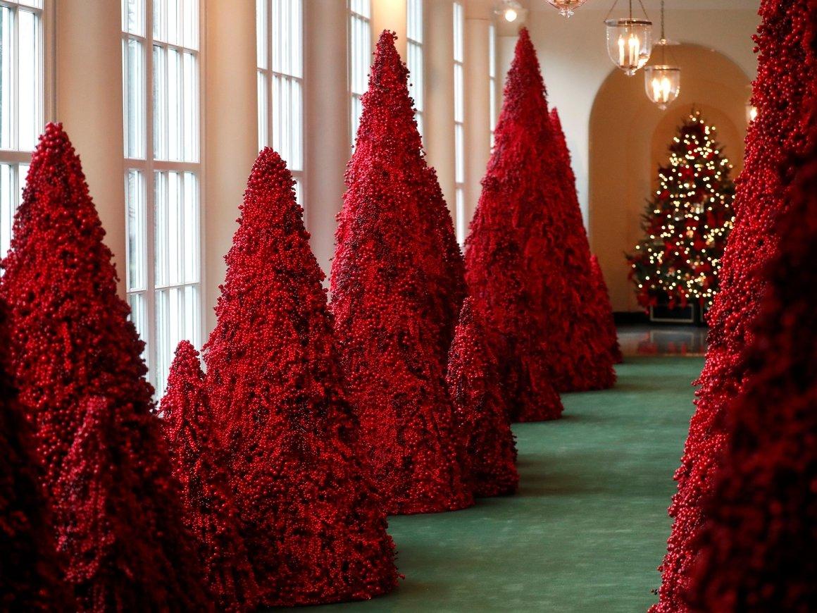 В этом году в Белом доме будет кроваво-красное Рождество (фото и видео)