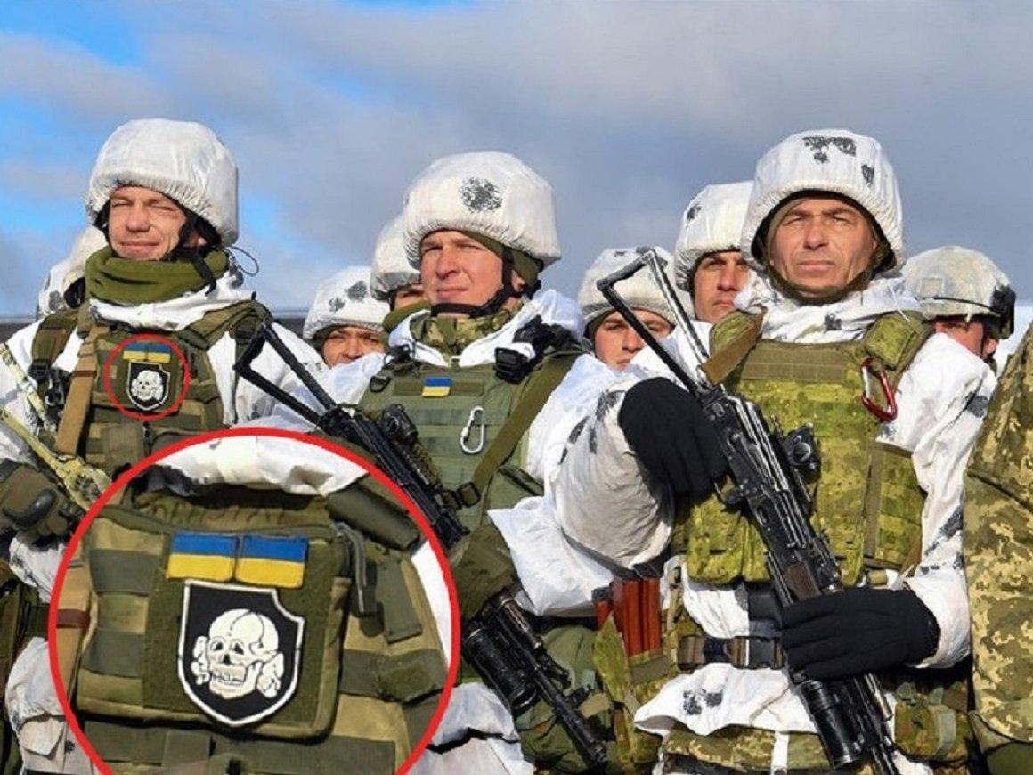 Порошенко сфотографировался с украинским десантником с СС-овской нашивкой (фото)