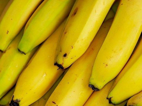 Голландские бананы — помощь в борьбе с глобальной грибковой угрозой