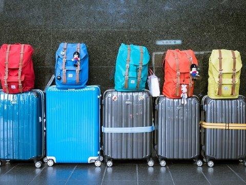Авиакомпании хотят терять меньше багажа и будут снабжать чемоданы чипами