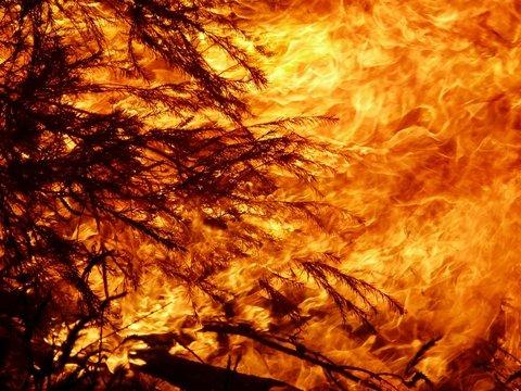 В Австралию заглянул Апокалипсис: из-за пожаров небо стало красным (фото)