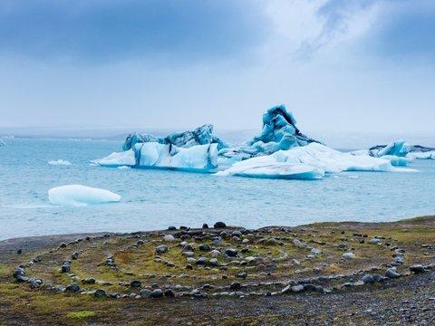 Земледелие в Арктике? Возможно, это станет реальностью — растения там уже нашли