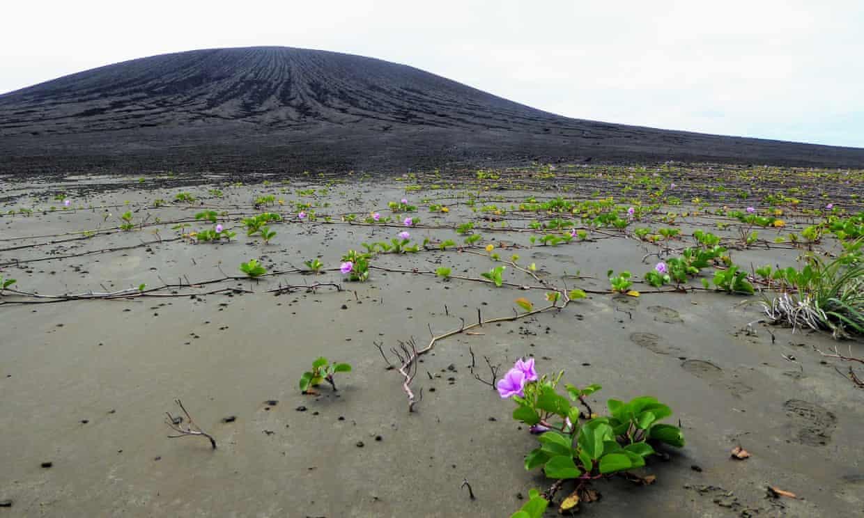 Безымянный остров с непонятной грязью