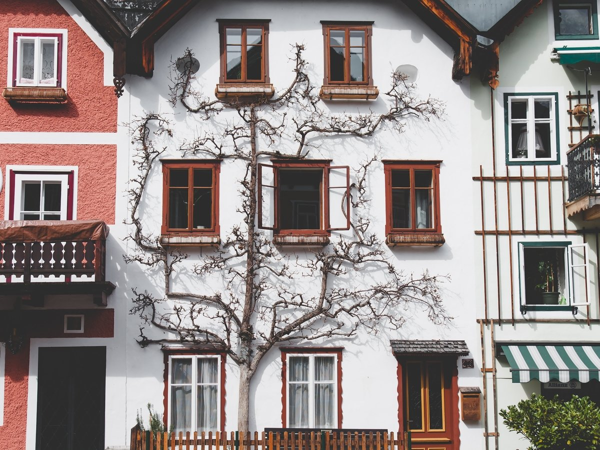 Наследние нацизма: Австрии придётся доплатить €1,5 млн за дом Адольфа Гитлера
