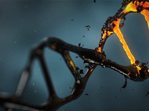 Анализ ДНК подтвердил личность Джека-потрошителя