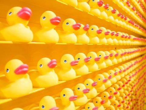 Инста-яйцо и жёлтые уточки? Странные аккаунты: откуда они берутся и зачем нужны?