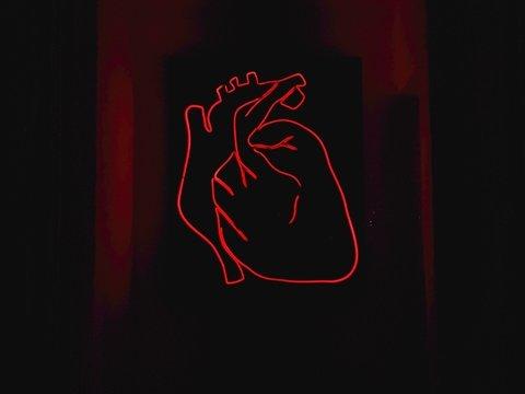 Человеческое сердце напечатали на 3D-принтере — от настоящего не отличить