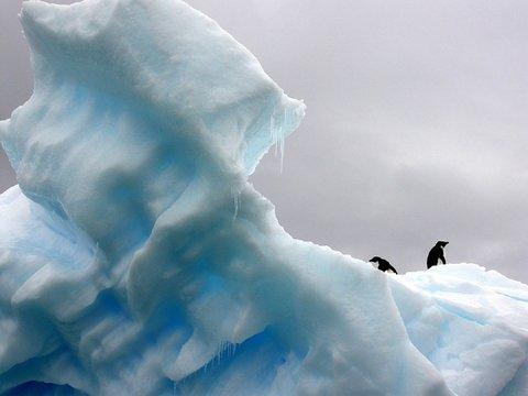 Материки затопит сильнее, чем думали учёные. Почему прогнозы изменились?