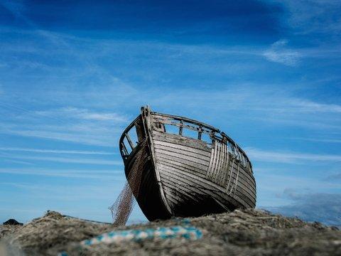 В США затопило Ноев ковчег. Но в 2019-м позвали не Господа, а адвокатов
