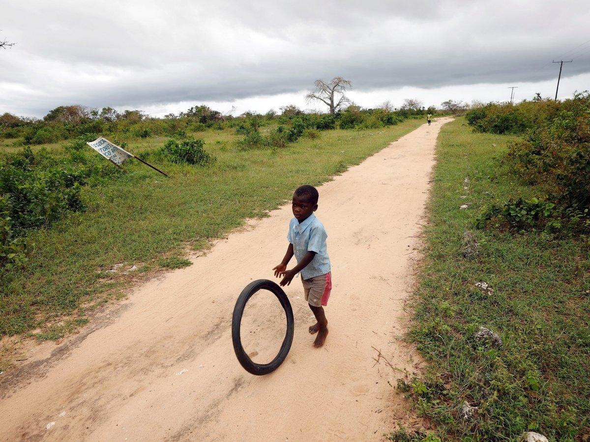 Фургон-компьютер на ишаке, или как в Мозамбике повышают цифровую грамотность