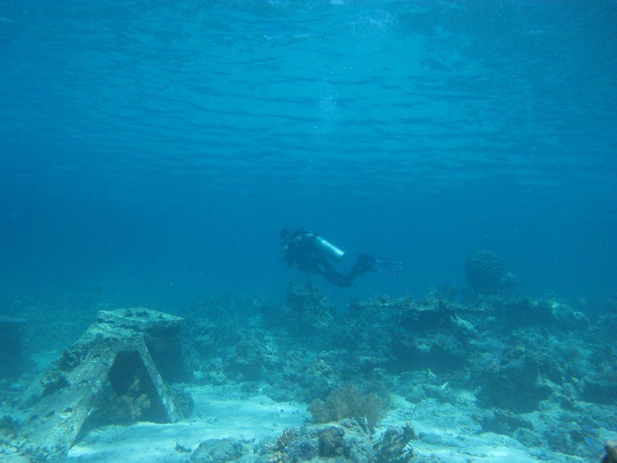 В Северном море нашли следы древнего затонувшего поселения, и это не Атлантида