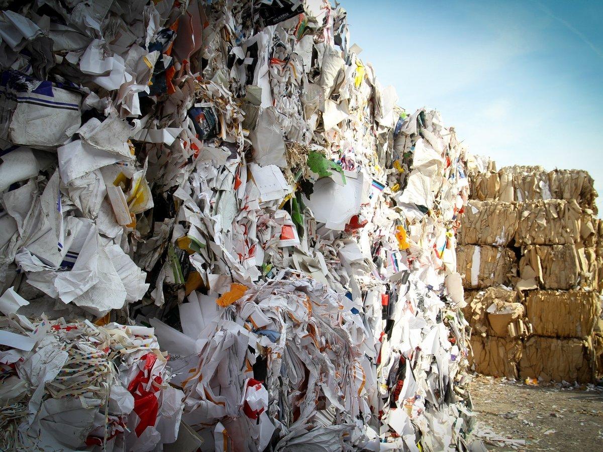 Через год в Индии вырастет мусорная гора. Она будет выше, чем Тадж Махал