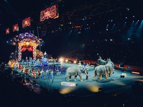 """В Германии отказались от цирковых животных — вместо них """"выступят"""" 3D голограммы"""