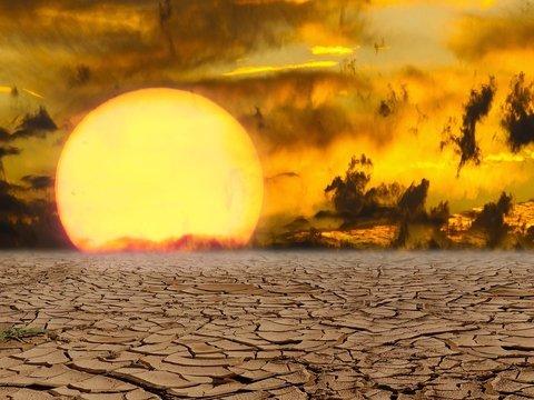 Климатический апартеид: кому грозит засуха и почему воды на всех не хватит?
