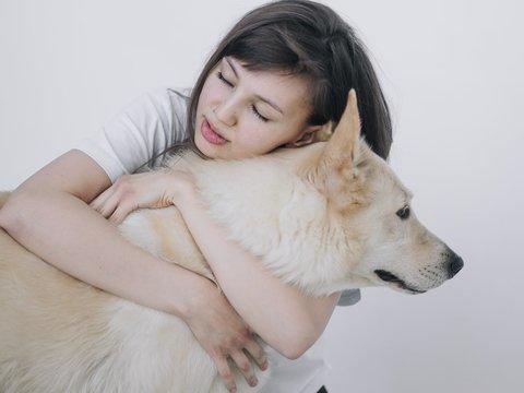В Южной Корее спасли 80 пёсиков — там закрыли крупнейший собачий рынок в стране