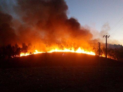 Бюджет целее будет: лесные пожары в Сибири не тушат из-за экономии средств
