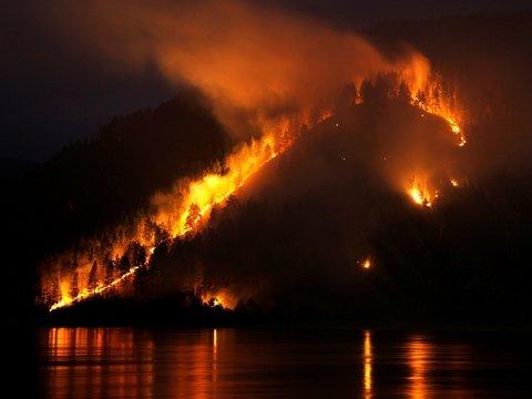 Пожары всё-таки ликвидируют: кто и что делает для тушения пылающей Сибири?