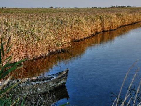 Круче древних египтян: Немецкий археолог переплывёт 3 моря на тростниковой лодке