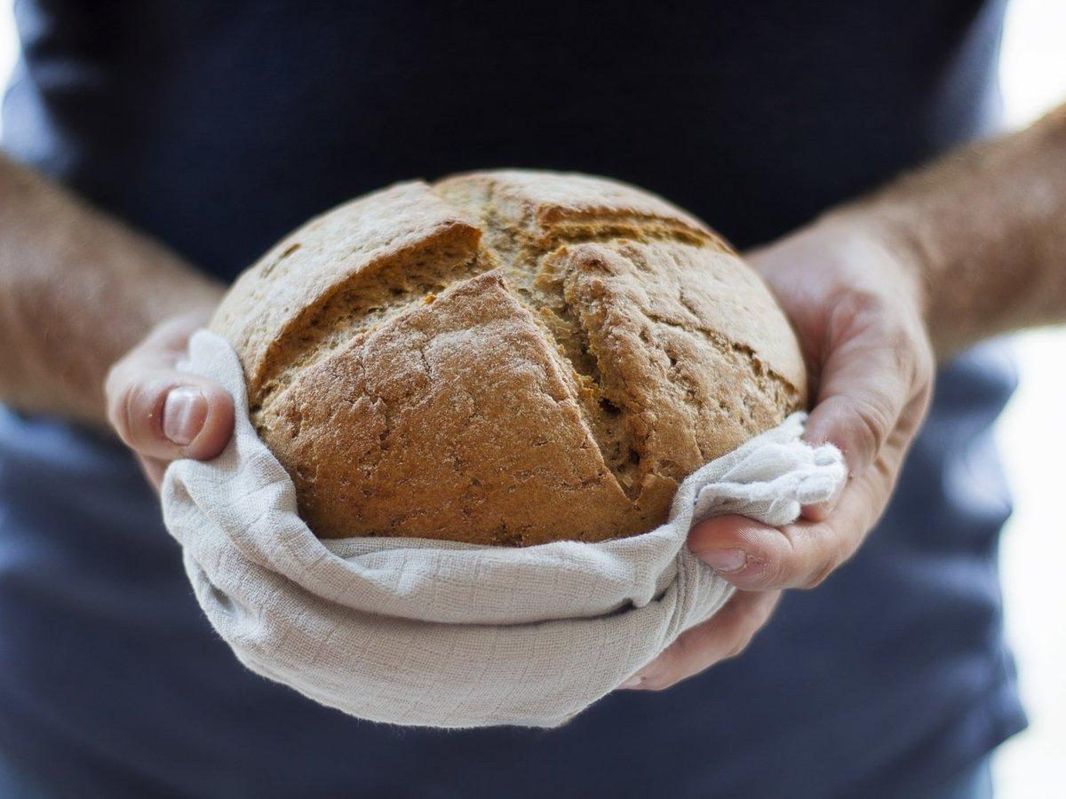 В США испекли хлеб из древнеегипетских дрожжей. Получилось даже съедобно (фото)