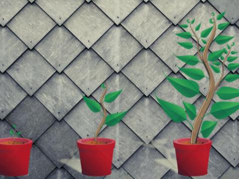 В Мексике создали деревья из стали. Они очищают воздух лучше настоящих