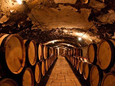 Чтобы не скучать в походе, крестоносцы построили в Израиле огромную винодельню