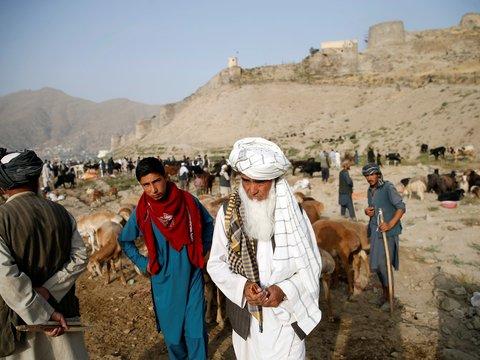 США и Талибан провели переговоры — почему их итог может укрепить ИГ?