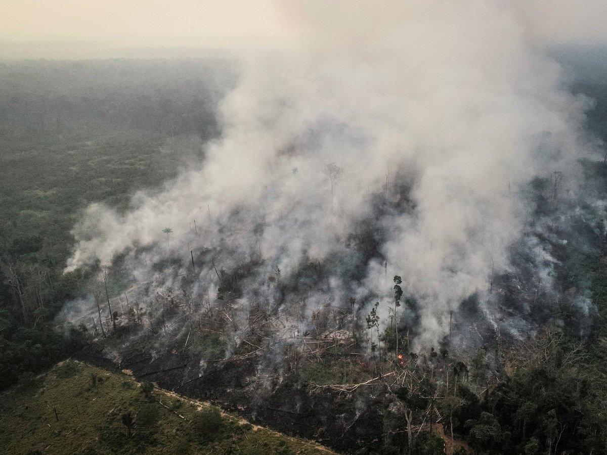 G7 предложила Бразилии $22 млн на тушение пожаров, но её обвинили в колониализме