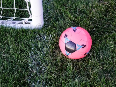 Нетолерантные фанаты губят футбол — их гомофобные выходки срывают матчи