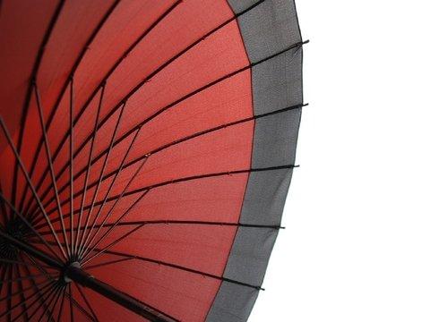Зонт застрял — это не глупая отмазка, а реальная причина не ходить на работу
