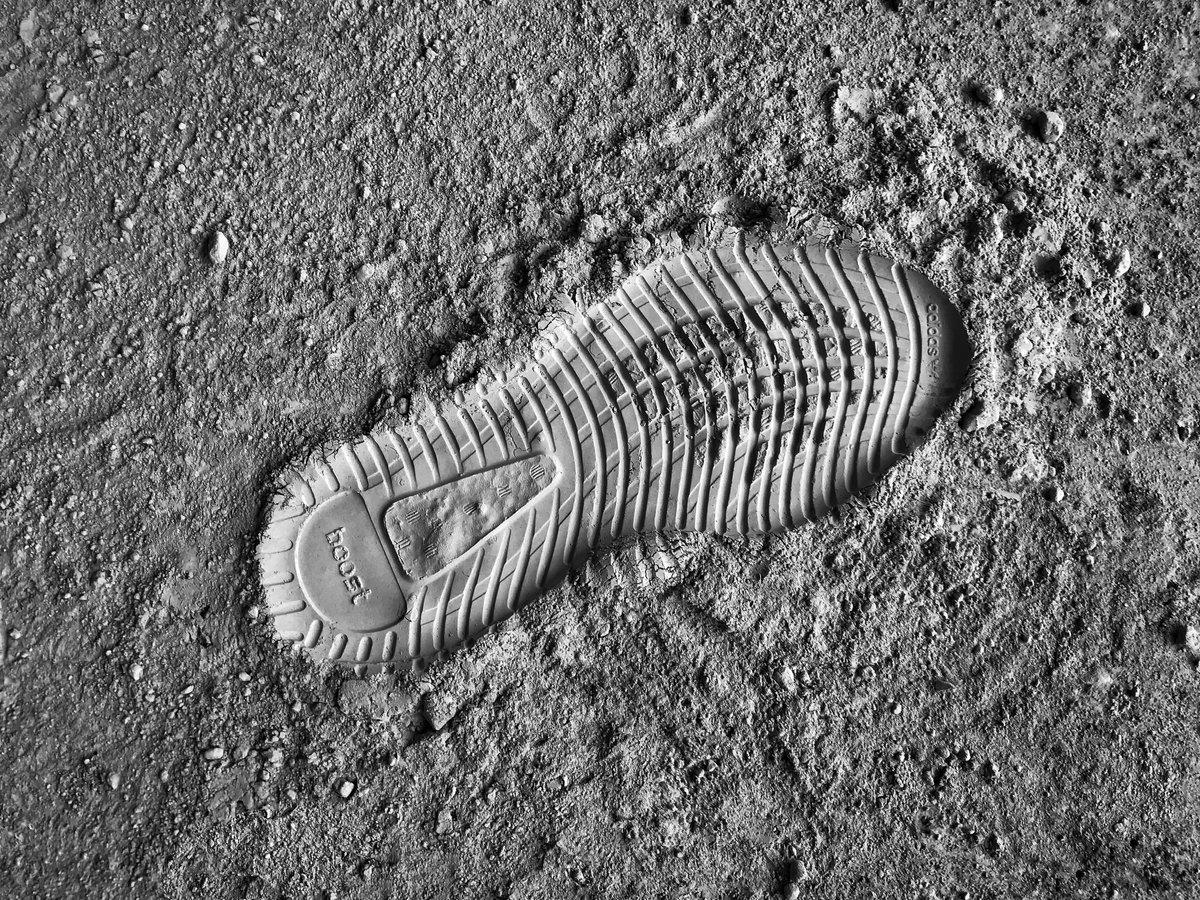 Космический коллаб: Национальная лаборатория США и Adidas отправят кроссы на МКС