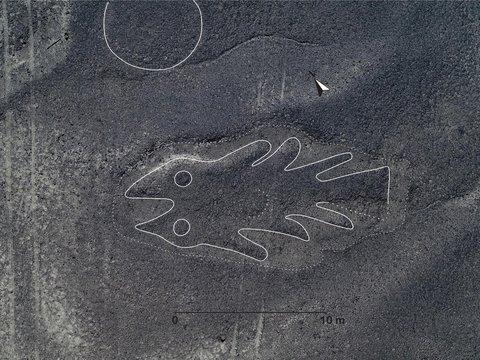 На плато Наска учёные обнаружили 143 новых рисунка (фото)
